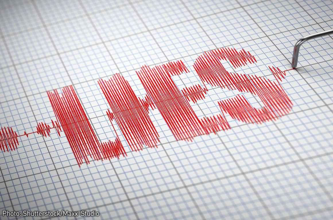 Lies Detector